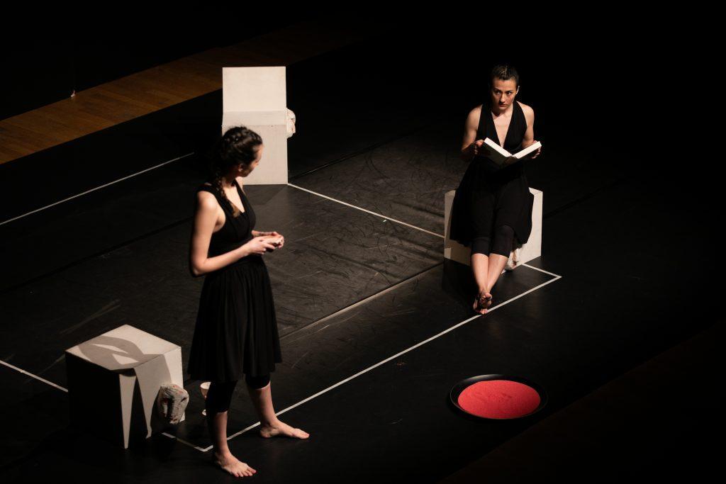 Tiyatro Öteki Hayatlar-Persona